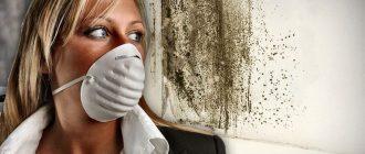 Что делать, если дома пахнет сыростью